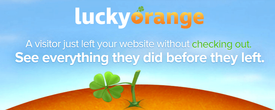 Lucky Orange Review