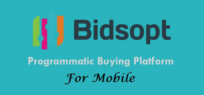 BidSopt Review