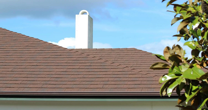 healthy roof